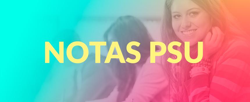 Promedio de notas PSU: La clave para ingresar a la Universidad